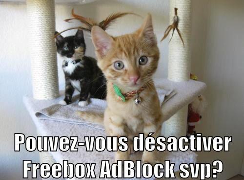 Pouvez-vous désactiver Freebox AdBlock svp ?